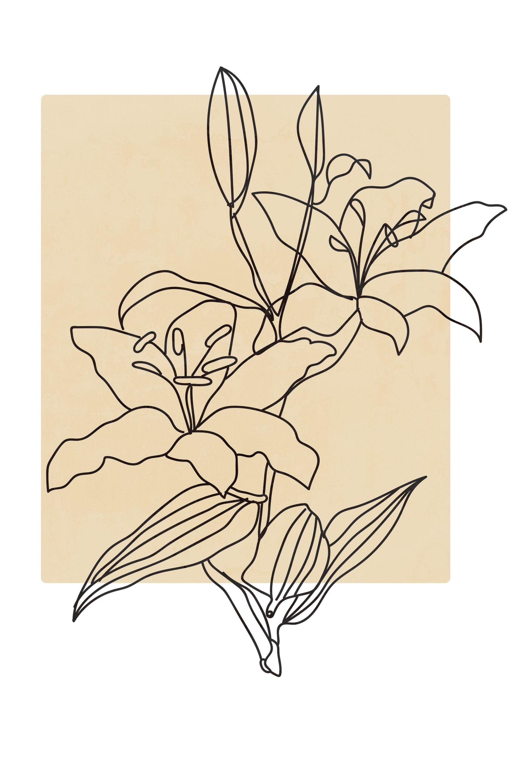 Abstract minimalist line drawing lily print